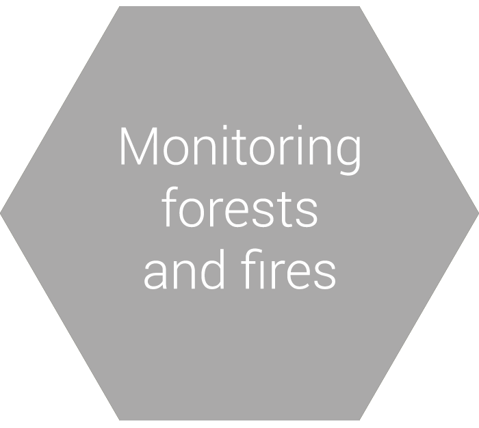 Monitoring forests and fires